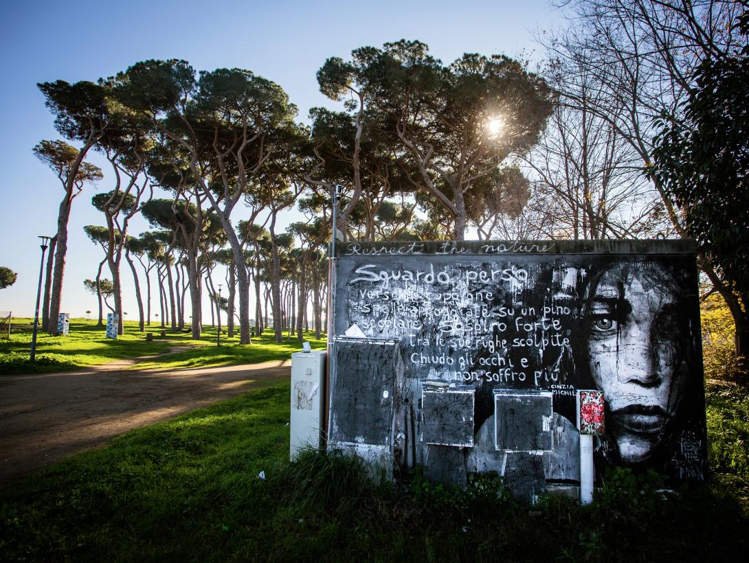 © Carlo Romano - FUORI POSTO_Parco del Pineto